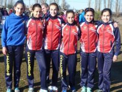 equipo cadete,oro